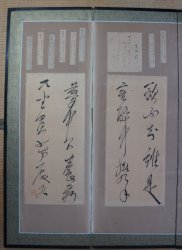 Haiku wind screen 1900